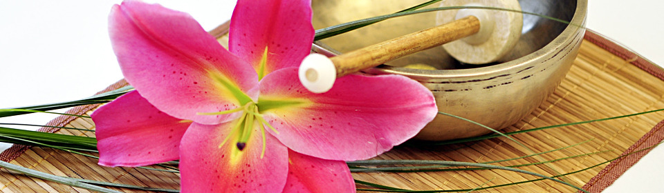 Querformat2_960x280.home_horizontal
